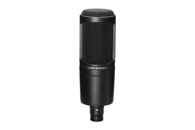 Microphones | At2020